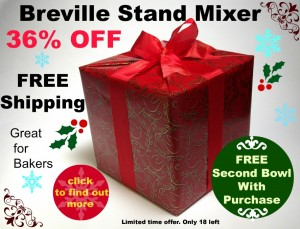 Breville Stand Mixer1 300x229 Review of the Breville 5 Quart Stand Mixer