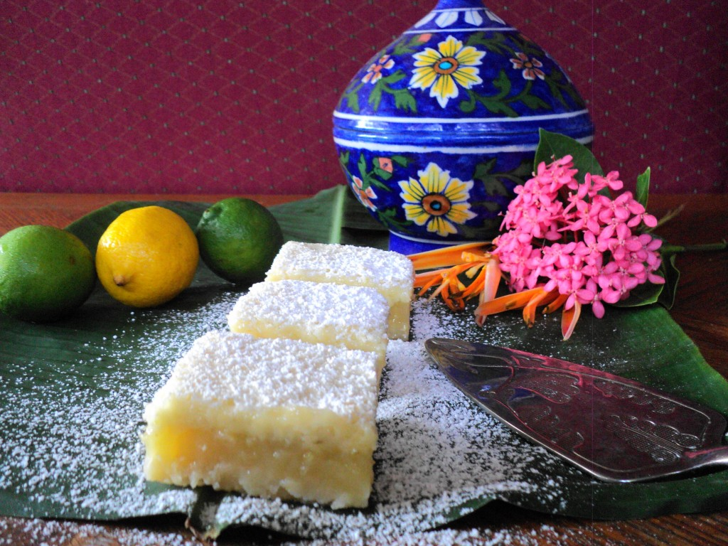 DSC01922 1024x768 Lemon Lime Bars