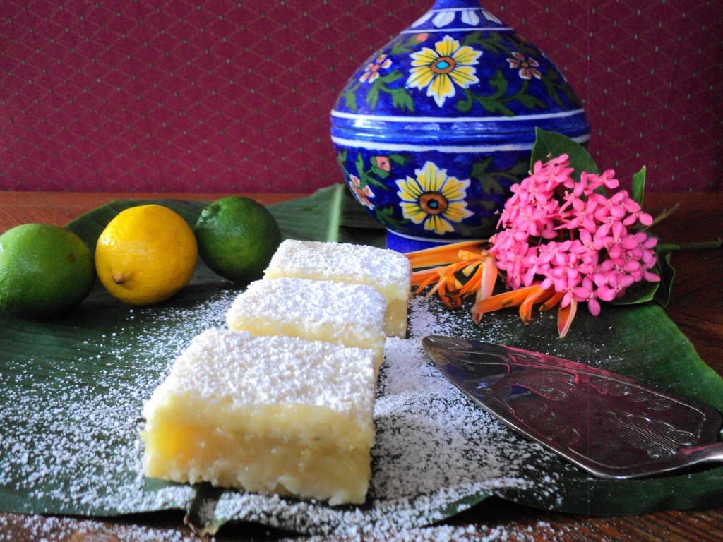 DSC01922 1024x768 Lemon Lime Bars