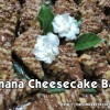 """Banana Cheesecake Bars"""